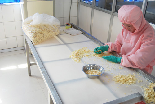 生产环境Linyi Yifa Foodstuff Co., Ltd.